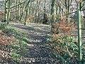 Leeds Country Way, Hunger Hills, Horsforth - geograph.org.uk - 288471.jpg