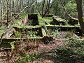 Lenzie Moss - old peat processing plant ruins.JPG
