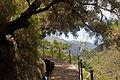 Levadas do Risco e 25 Fontes, Madeira - Aug 2012 - 03.jpg