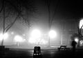 Lights in fog (8187999756).jpg