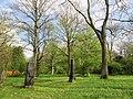 Lindener Bergfriedhof - Hannover-Linden Stadtfriedhof Am Lindener Berge - panoramio (10).jpg