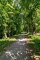 Lindenweg Elze-9496.jpg