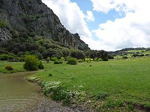 Llanos del Republicano - P1230168.jpg