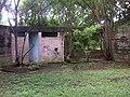 Local abandonado no Parque Ecologico Tiete - panoramio - rodrigodemarque.jpg