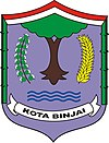 Official seal of Binjai