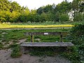 Long shot of the bench (OpenBenches 6241-1).jpg