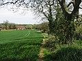 Looking NE along footpath - geograph.org.uk - 784172.jpg