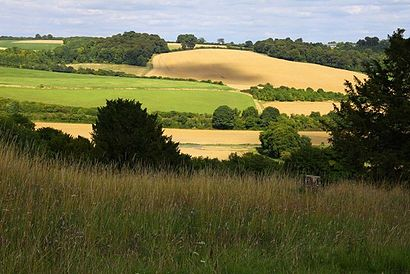 Looking across the Chilterns - geograph.org.uk - 1449866.jpg