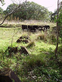 Laheys Canungra Sawmill