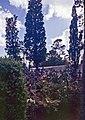 Madeira-40-Friedhof-2000-gje.jpg