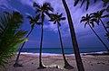 Magic Sands (Laaloa Bay) Hawaii Christmas.jpg