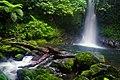 Malabsay Falls, Panicuason, Naga City - panoramio.jpg
