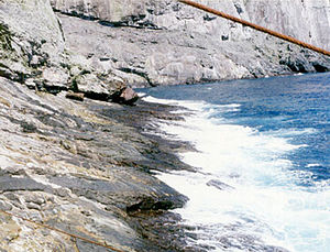 Malpelo Island - Image: Malpelo Island Cliffs