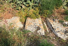 Malta - Naxxar - Triq il-Katakombi - Salina Cart Ruts 01 ies.jpg