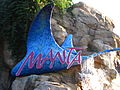 Manta at SeaWorld Orlando 73.jpg