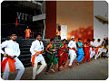 Marathi divas.jpg