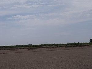 Marjal i Estany de la Ribera Sud del Xúquer 03.JPG