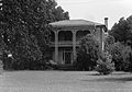 McWilliams-Cook House.jpg