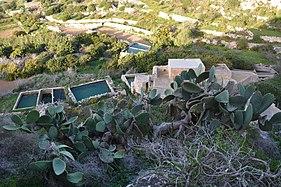 Mellieħa ridge 06.jpg