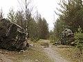 Metsäpolku - panoramio.jpg