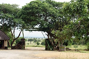 Tanzania National Parks Authority - Mikumi National Park Entrance