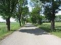 Milagainiai, Lithuania - panoramio (5).jpg