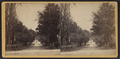 Mill Street, Cazenovia, N.Y, from Robert N. Dennis collection of stereoscopic views.png
