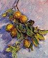 Monet - branch-of-lemons-1.jpg