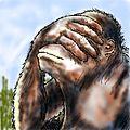 Monkeysmack.jpg