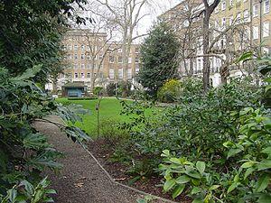 Montagu Square - Montagu Square