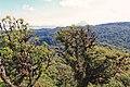 Monteverde Costa Rica 03.jpg