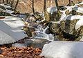 Montseny invierno.jpg