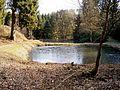 Morsbach - Burg Volperhausen 04 ies.jpg