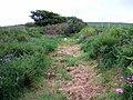 Mountain Road-Ffordd Mynydd - geograph.org.uk - 455486.jpg