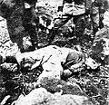 Mrtvi partizan Alojz Žvan.jpg