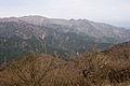 Mt.Tanzawa 05.jpg
