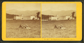 Mt. Washington, from the Fabyan House, from Robert N. Dennis collection of stereoscopic views 2.png