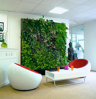 Green wall - An indoor green wall