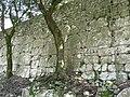 Mura megalitiche - panoramio (3).jpg