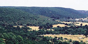 Apulia - Landscape of the Murge plateau