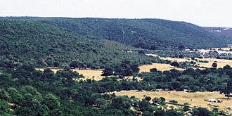 Apulia - Landscape of the Murge plateau