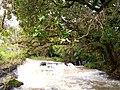 Naibei river.jpg