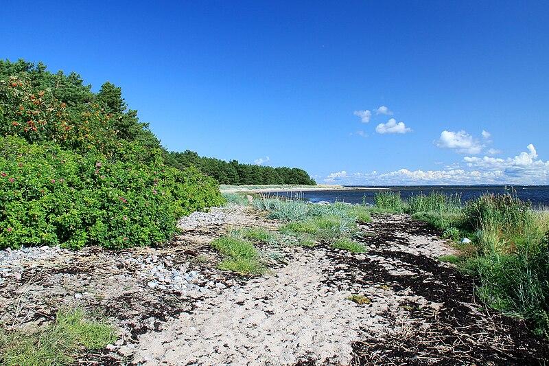 Острів Найссаар (фото Ingvar Pärnamäe) https://commons.wikimedia.org/wiki/File:Naissaar.JPG
