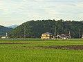 Nakadera, Mihama, Mikata District, Fukui Prefecture 919-1136, Japan - panoramio (1).jpg