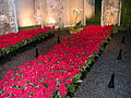 Nantes Floralies2004.JPG