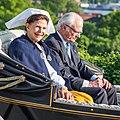 National Day of Sweden 2015 7791.jpg