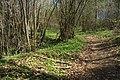 National nature reserve Vyšenské kopce in spring 2012 (24).JPG