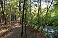 Naturschutzgebiet Mittleres Innerstetal mit Kanstein - Innerste bei Grasdorf (2).JPG
