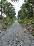 Nebenbahn Wennemen-Finnentrop (5820258330).jpg