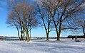 Niagara River Parkway (4367408252).jpg